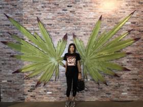 Cannabition Cannabis Museum