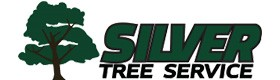 Silver tree Services, Professional Tree Trimming services Alpharetta GA